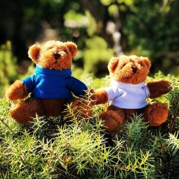 Peluche ourson cadeau surprise accueil enfant